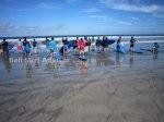 Bali Group Surf School